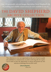 David Shepherd Archive Collection